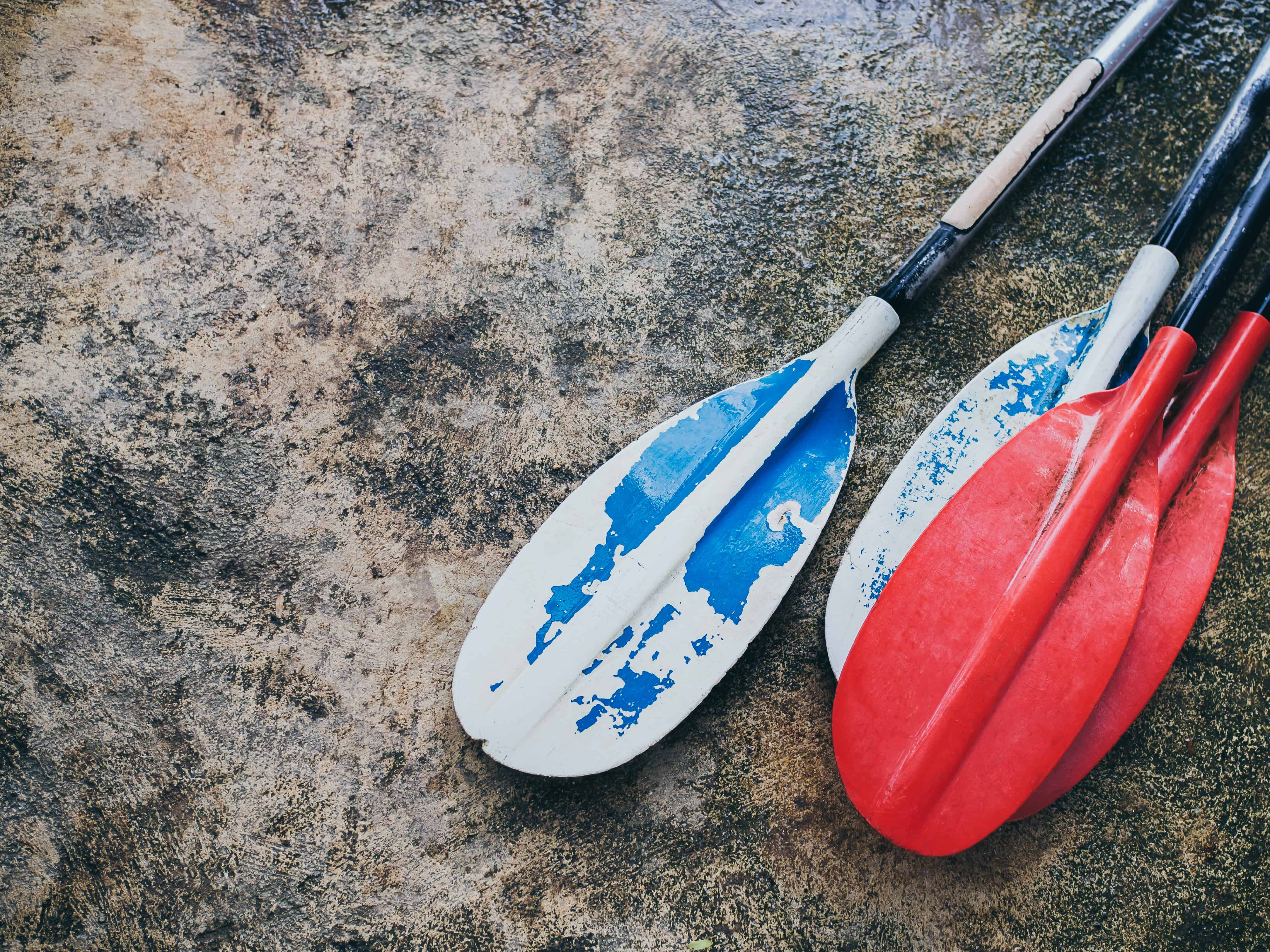 Best Kayak Paddles Under $100
