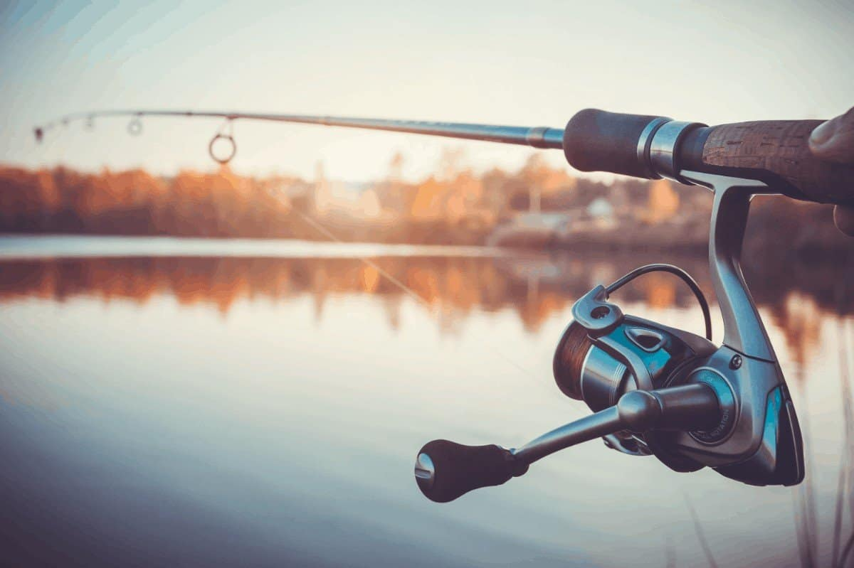Best Ultralight Spinning Reels 2019